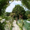 le jardin (the garden)