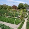 le potager (the kitchen garden)